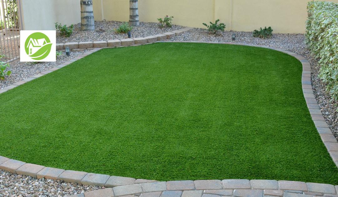 Stellenbosch Resident Backyard Grass